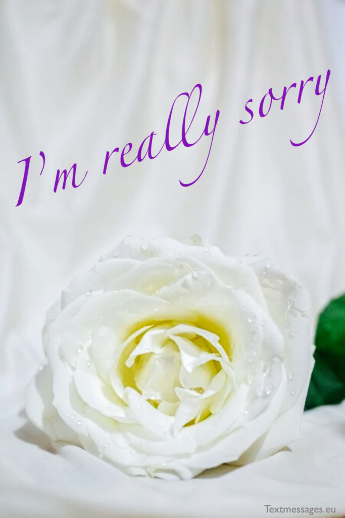 I am sorry quotes for her