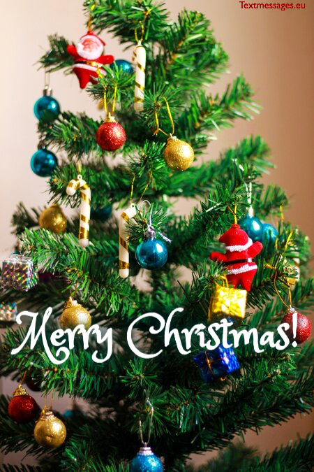 Beautiful Christmas wishes for family