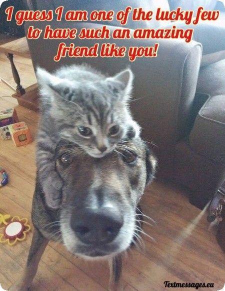 Best Friend Text Messages