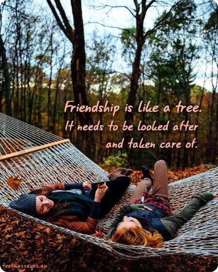 best friend wishes image