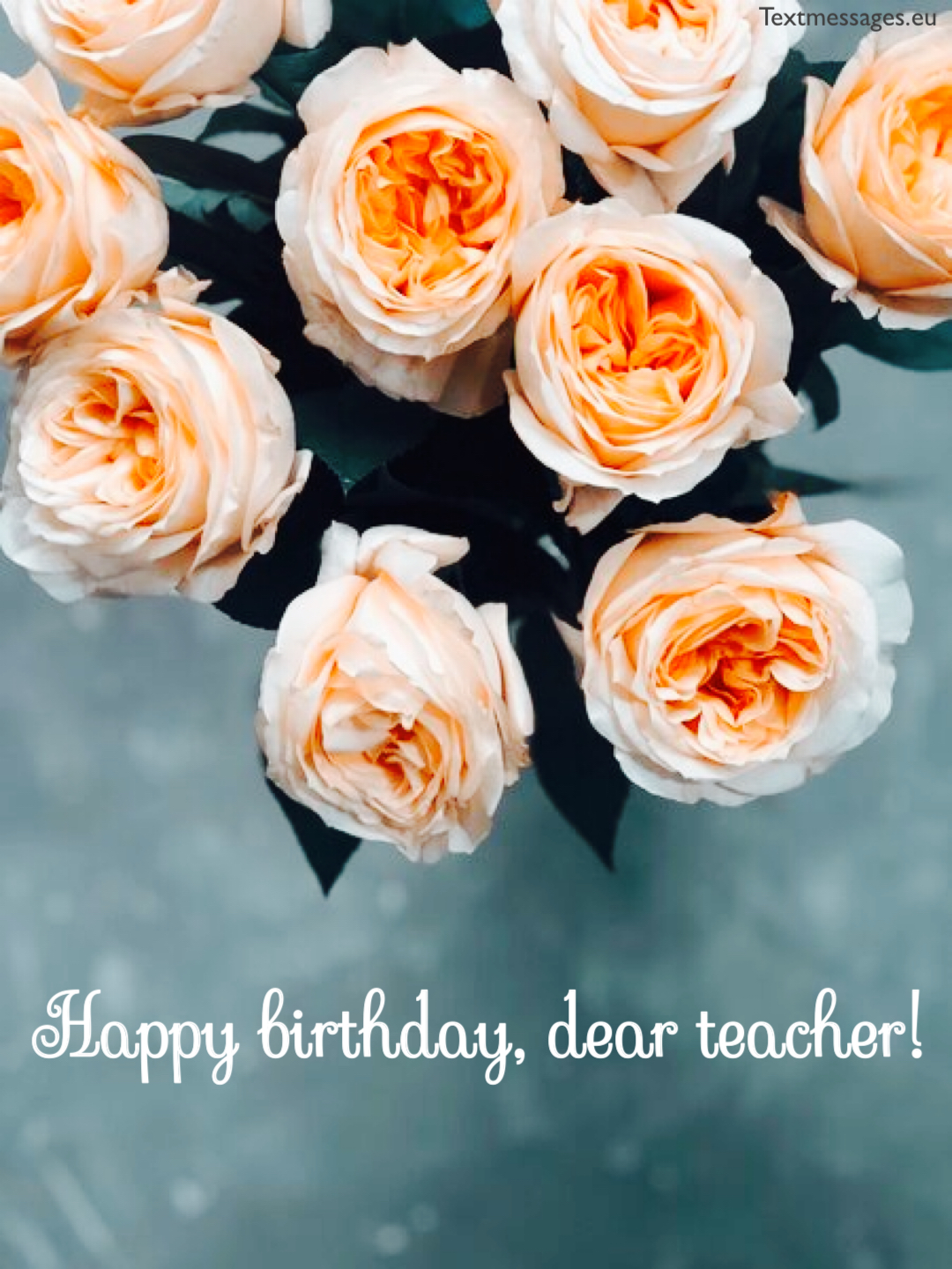 Happy Birthday Wishes For Teacher Textmessageseu