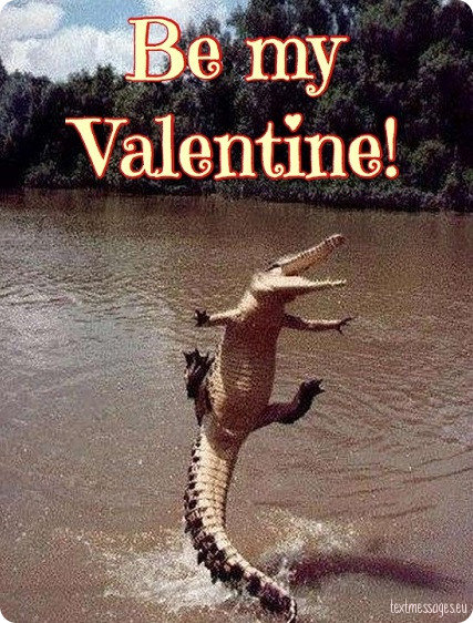 funny valentine's day card for friends