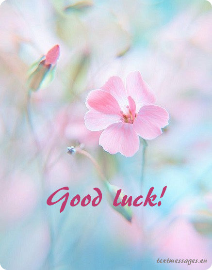 good luck card for her