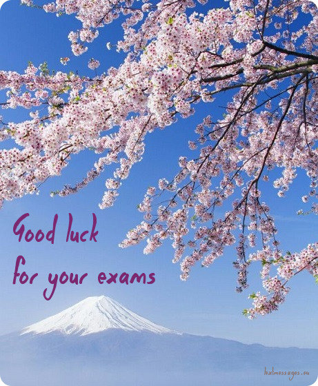 good luck for exam text