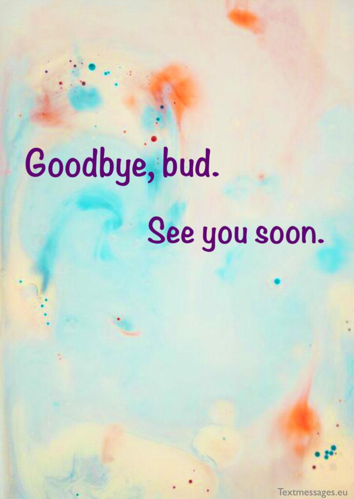 Beautiful goodbye words for friend