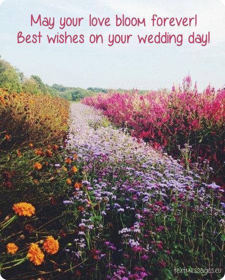 happy wedding for friend