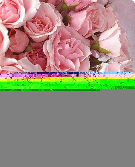 love card roses