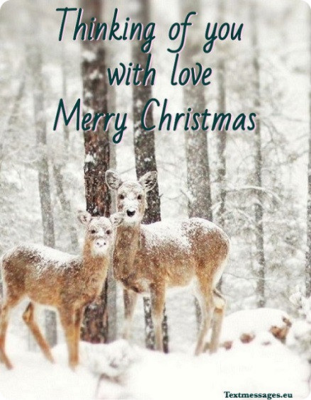 merry christmas card for facebook