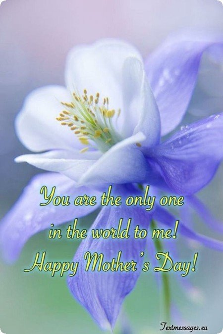 Top 50 Happy Mother S Day Messages And Wishes With Images