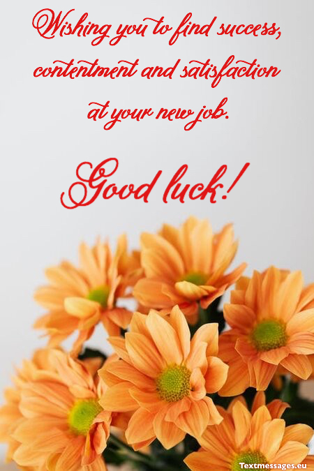 Congratulations Quotes New Job Position: Top 50 Good Luck For New Job Quotes And New Job Wishes