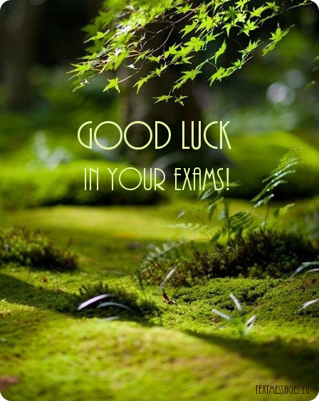 nice ecard good luck for exam