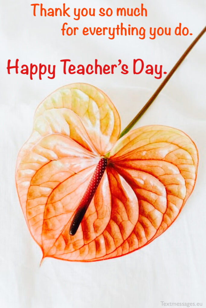 Happy teacher's day greetings