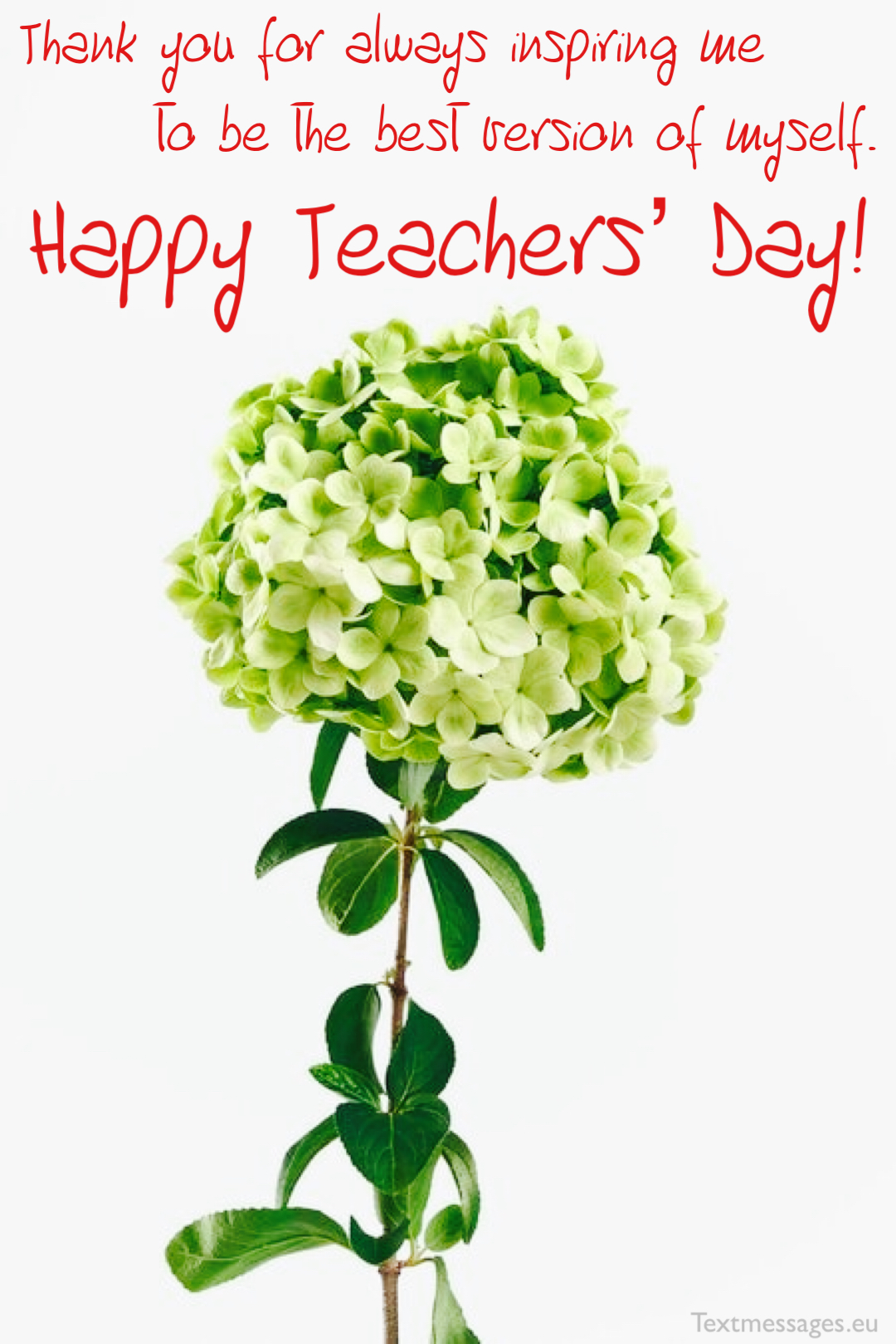 teacher's day image