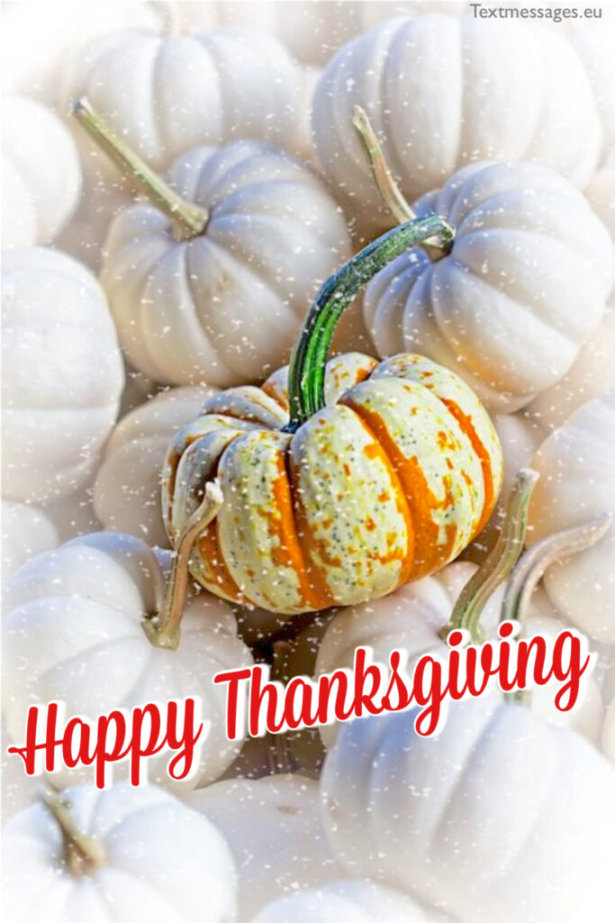 Thanksgiving sayings for friends