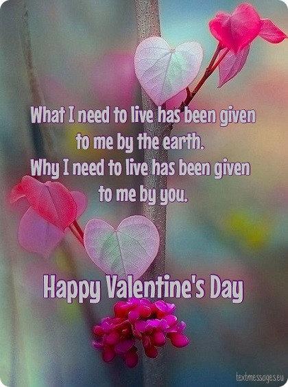 valentine's day wishes for girlfriend